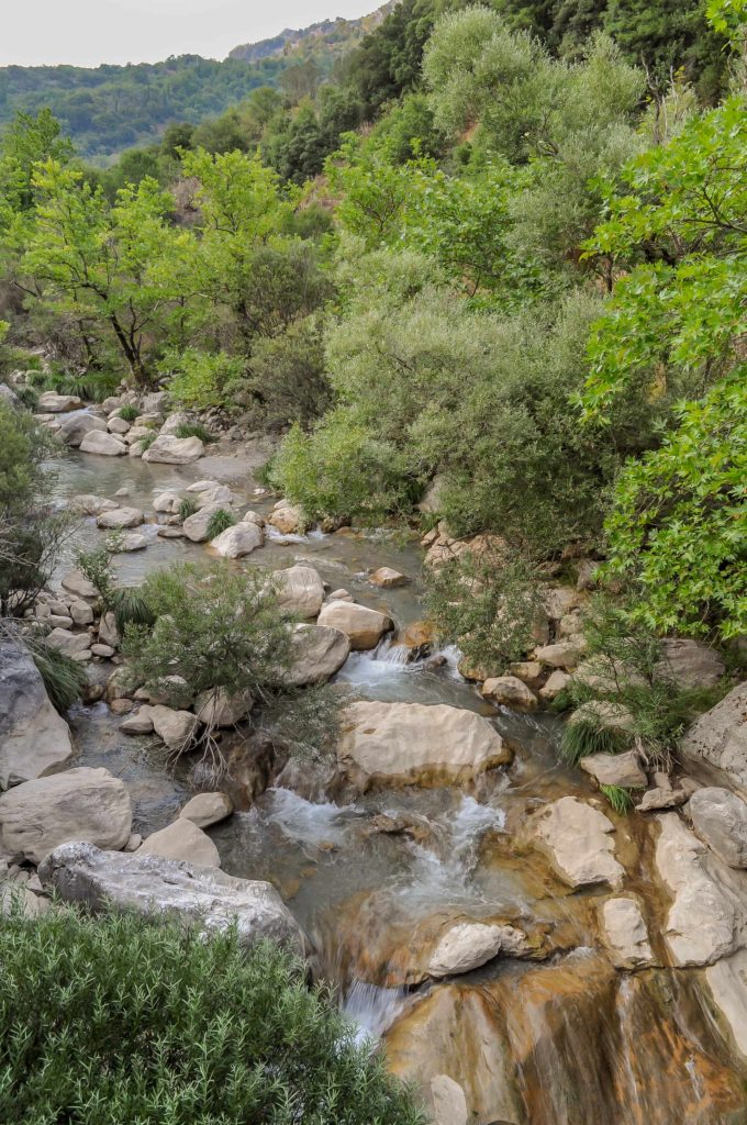 Lousios River along the best hiking trails in Greece.