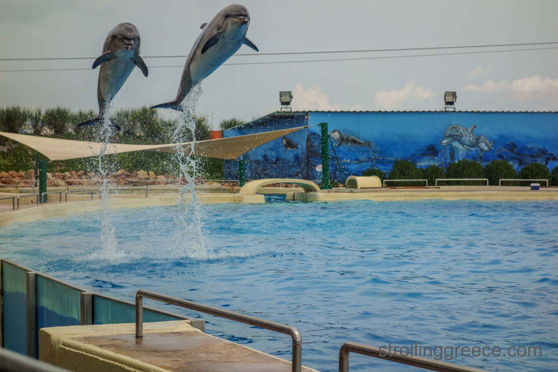 Dolphinarium in Athens Greece