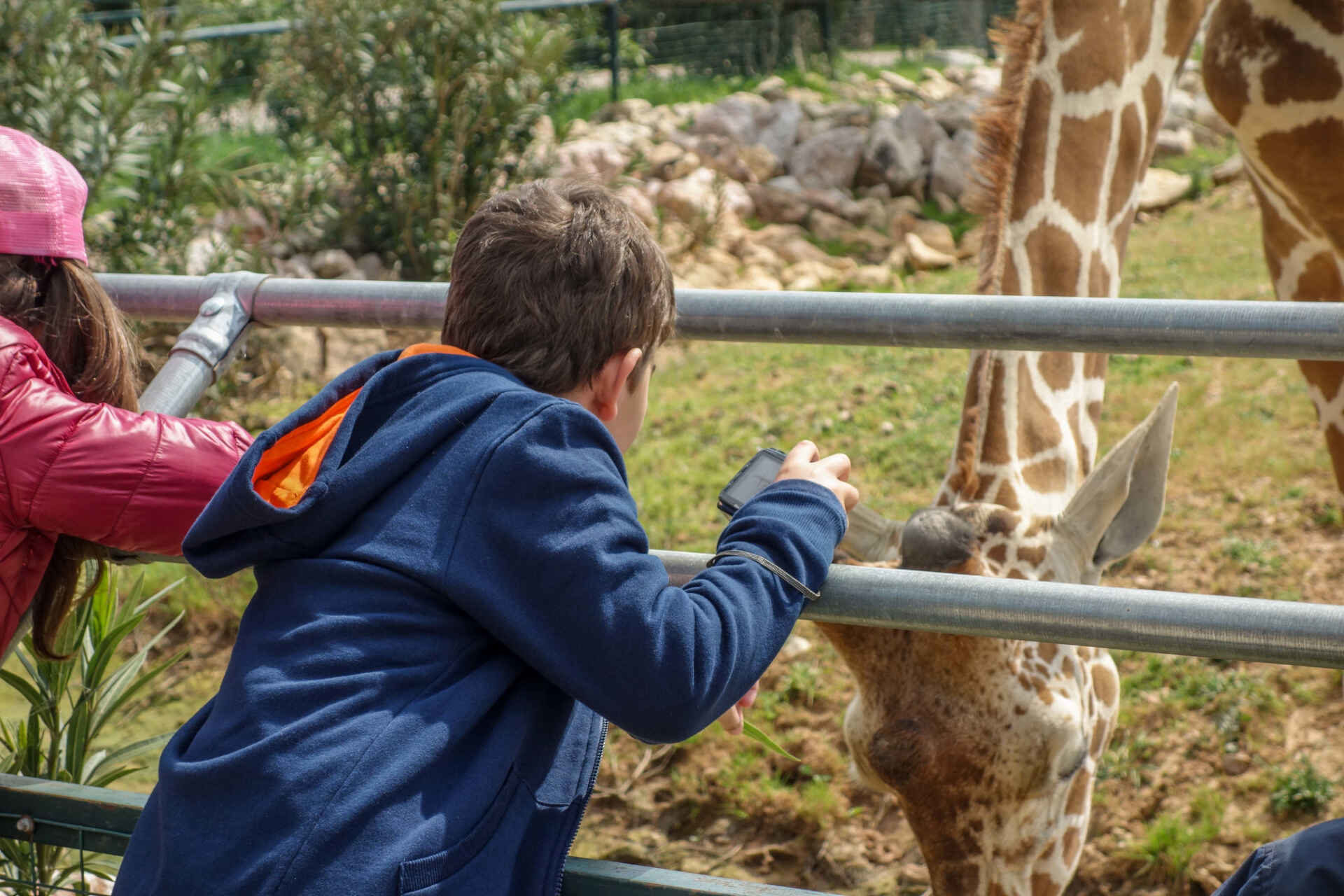 Things to do in Athens with kids. Zoo Athens.